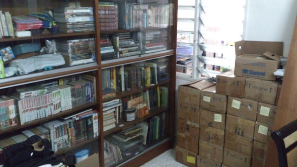 The other built in cupboard, and the boxes of comics next to it.